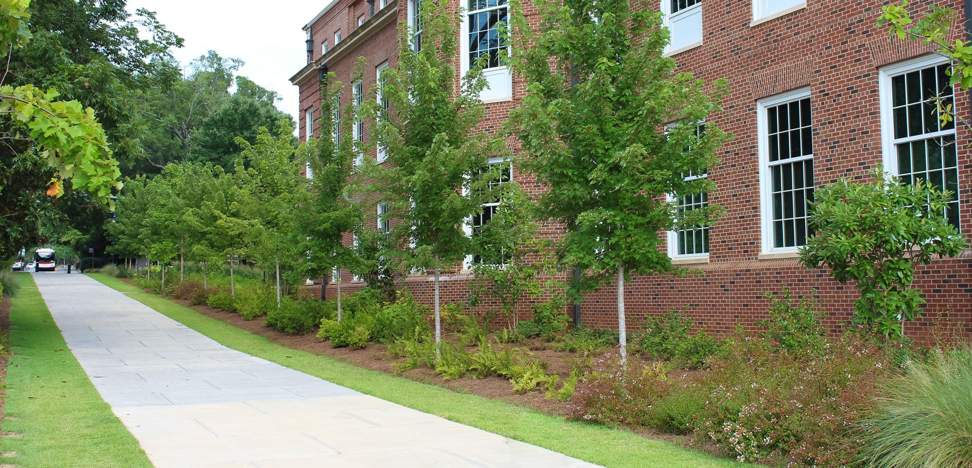 UGA Correll Hall